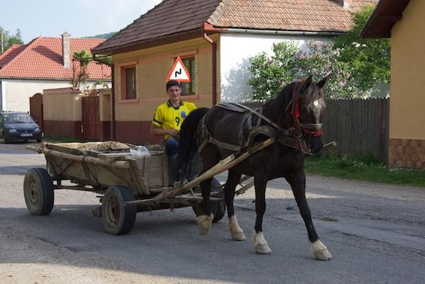 28-horse-cart